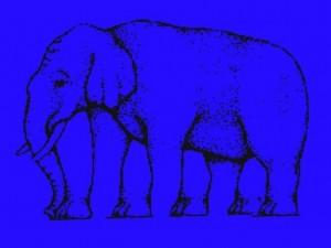 blue-elephant